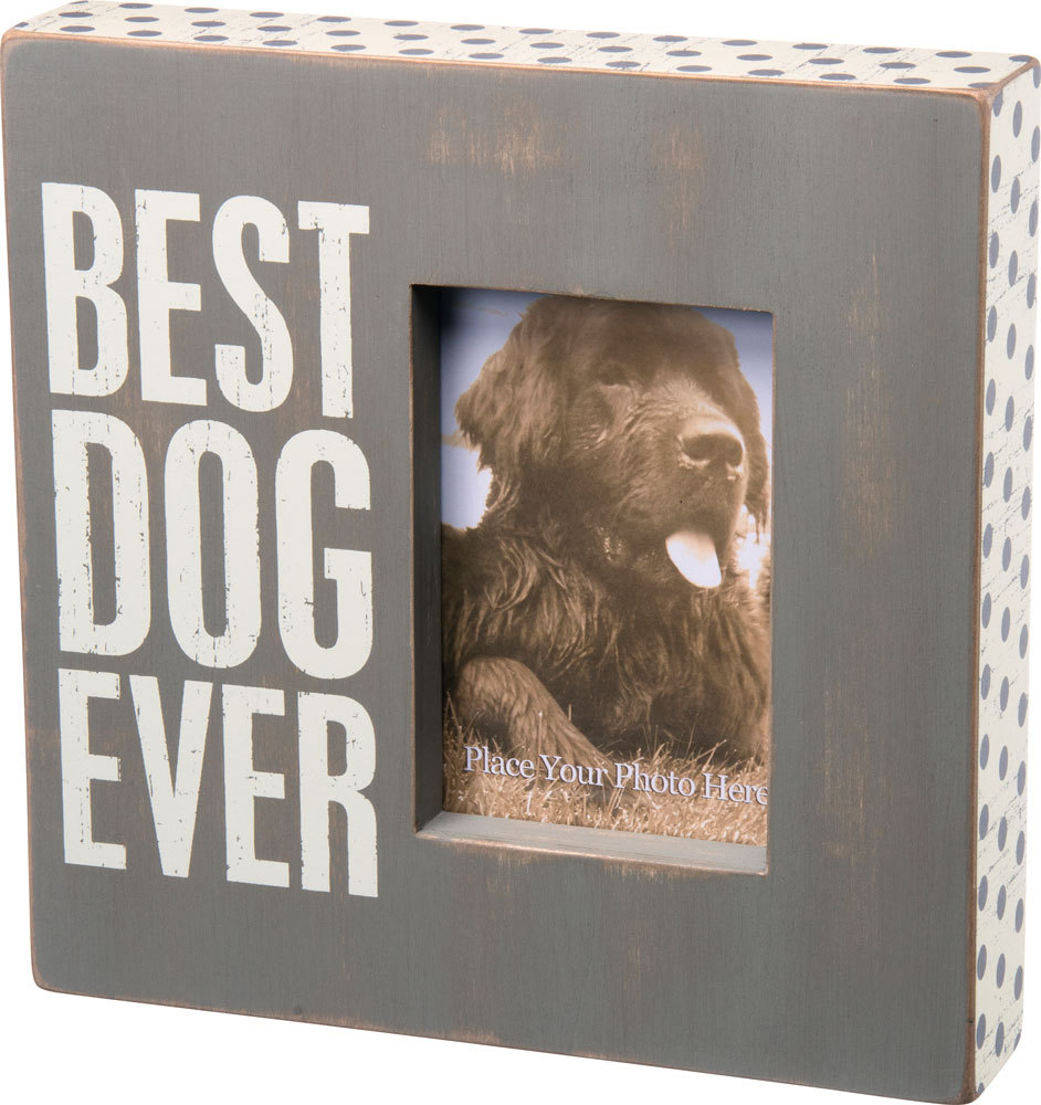 Best Dog Ever Gray Box Frame Tulips