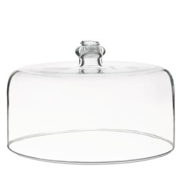 b&t glass cake dome